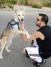 Marwan 40 y.o. from Lebanon